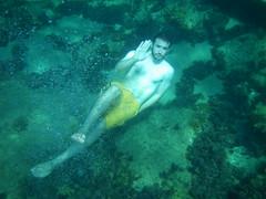diving(0.0), coral reef(1.0), underwater diving(1.0), swimming(1.0), sports(1.0), marine biology(1.0), water sport(1.0), underwater(1.0), freediving(1.0), reef(1.0),
