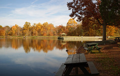 Lake Brittle in fall