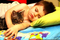 fast asleep   kid & kitten    MG 7759