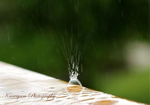usa green art water rain reflections photography lawrence balcony kansas crown windowview splash raining waterdroplets viewfrommywindow raindrop summerrain drizzling pitterpatter iloverain myalltimefavsong kaaviyam refreshingsummer kaaviyamphotography musicilayaraja lyricsvaali சின்னச்சின்ன தூரல்என்னஎன்னைக்கொஞ்சும் சாரல்என்னசிந்தச்சிந்த ஆவல்பின்ன நெஞ்சில்பொங்கும்பாடல்என்ன whatatinytinyraindropsdrizzlesadoremeandthiswonderfulsceneinspiremyhearttosingasong பாடல்சின்னச்சின்ன தூரல்என்னபடம்செந்தமிழ்பாட்டுஇசைஇளையராஜா எம்எஸ்விஸ்வநாதன் singerspb chinnachinnathooralenna spbalasubramaniyam