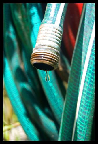 home water rain yard ma spring massachusetts newengland hose drip mass bridgewater
