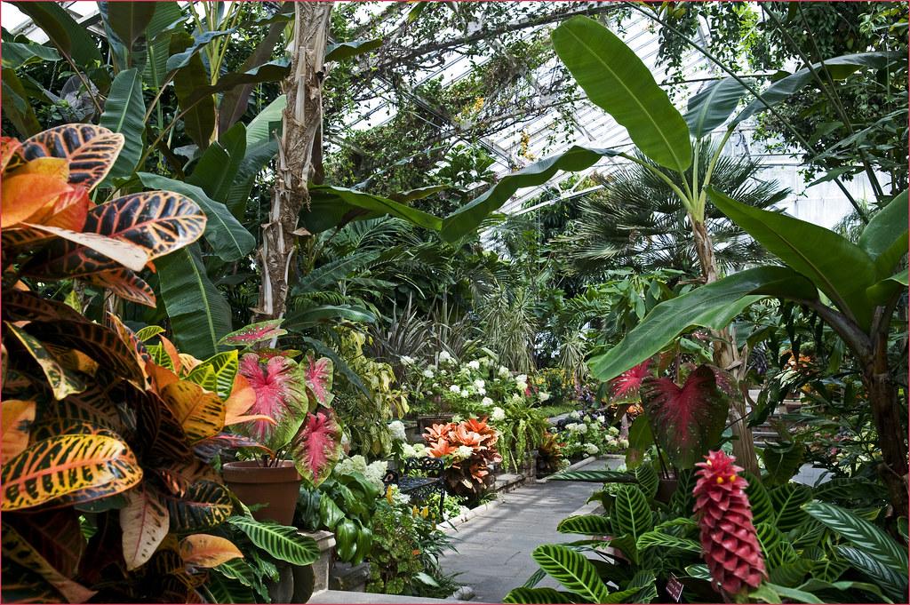 Planting Fields Arboretum, greenhouse