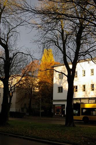 bauhaus berlin reinickendorf