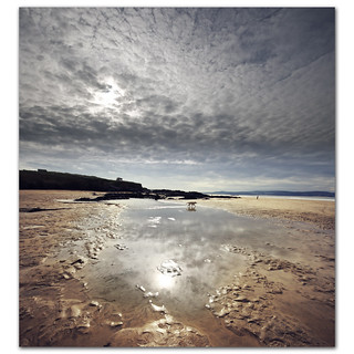 Altocumulus reflections at Gwithian Sands. Have you heard the one about the dog who went for a walk and forgot to take his owner?