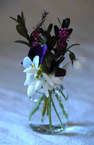 early spring flowers in small vase