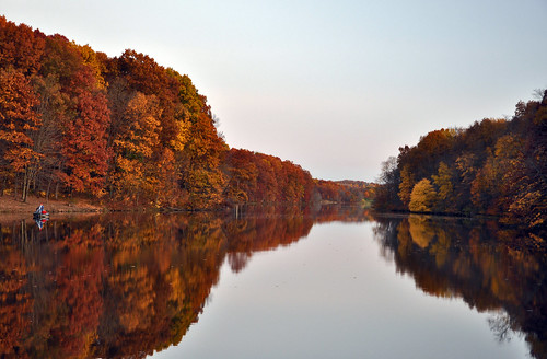 autumn trees red orange lake reflection fall leaves