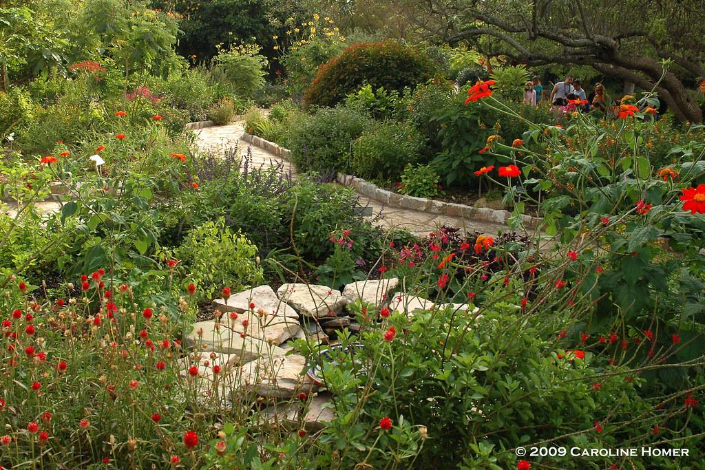 rose garden san marcos tx