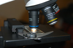 laser(0.0), camera lens(0.0), optical instrument(1.0), scientific instrument(1.0), light(1.0),