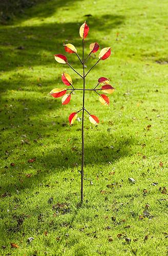 The Rhubarb & Custard Tree