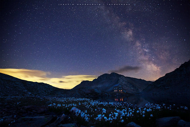 Cottongrass and milkyway