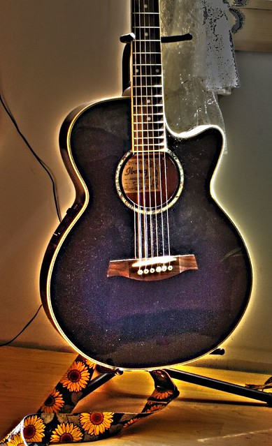 Photo:Blue Ibanez By Bluenose Canoehead