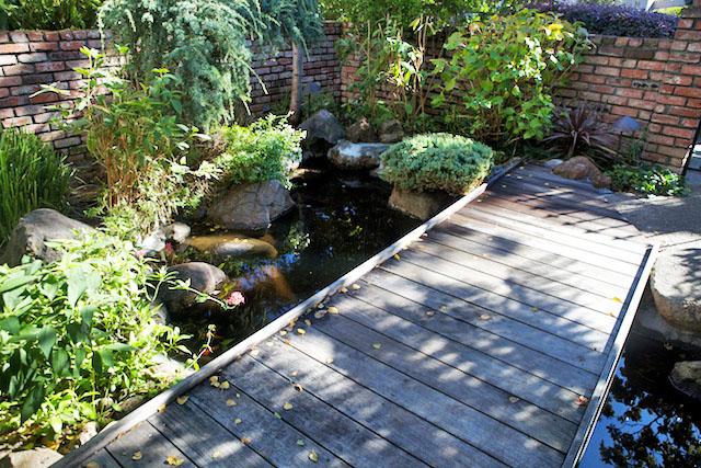 Entry bridge over koi pond flickr photo sharing for Koi pond bridge