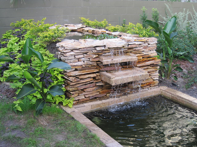 Pond Ideas A Gallery On Flickr