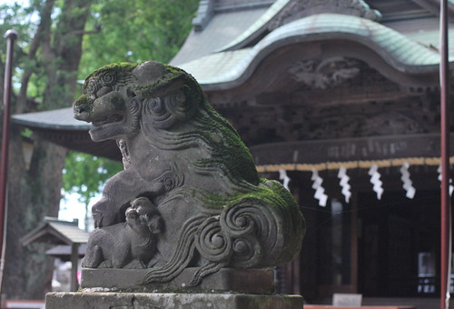狛犬 a stone-carved guardian dogs