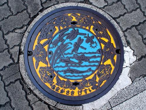 Amagasaki city Hyogo pref manhole cover(兵庫県尼崎市のマンホール)