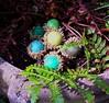 6 felted acorns