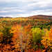 Fall colors by cpkv