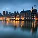 Government / The Hague 2017-szúnyogháló