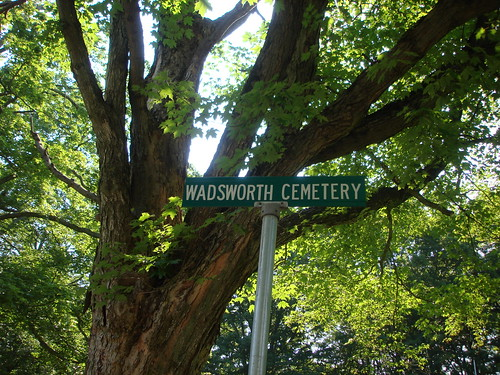 Wadsworth Cemetery Sign by midgefrazel