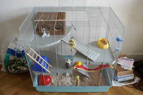photos de vos cages page 90 questions probl mes. Black Bedroom Furniture Sets. Home Design Ideas