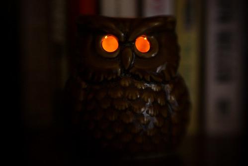 Spooky Owl by nebraska_becky