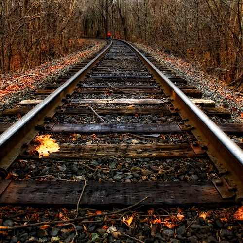 autumn trees winter red fall leaves nikon curves maryland trains autumnleaves squareformat rails greatshot railroads railroadtracks d300 vanishingpoints diminishingperspective princegeorgescountymaryland 1755nikkor pgcountymaryland travelsofhomerodyssey croommaryland southernmarylalnd