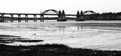 Florence Bridge BW