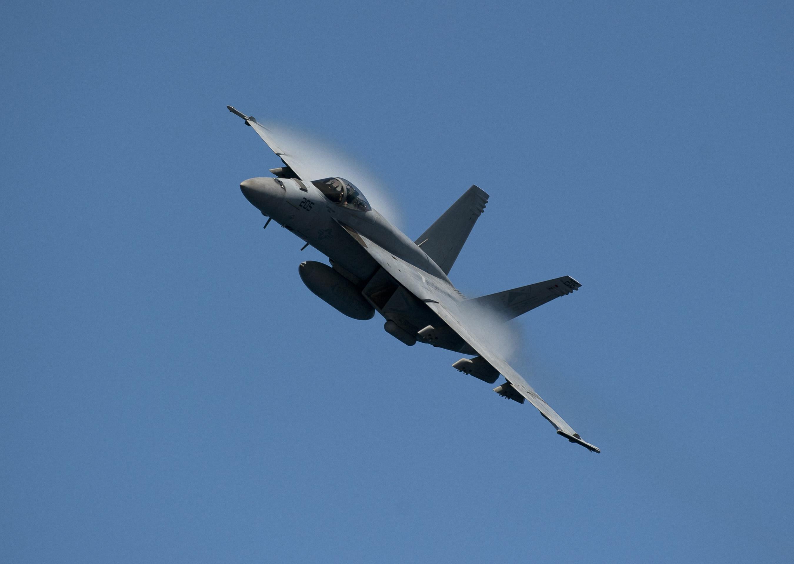 """""""超级大黄蜂""""F/A-18E战机"""