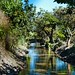 Small photo of Acequia