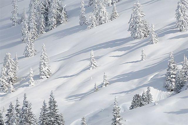 Kitzbueheler Alpen - Winterlandschaft