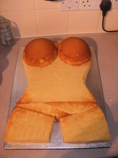 Boob Cake Tin