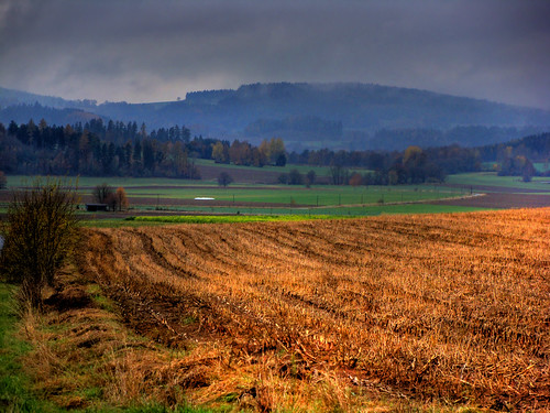 autumn germany landscape bavaria spielberg oberpfalz
