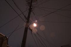 2010.01.04 - Night shooting under the snow