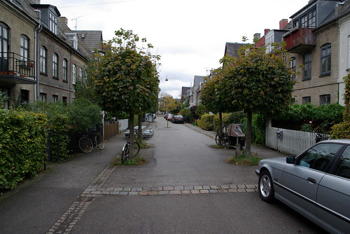Street in potato rows, Copenhagen, Denmark