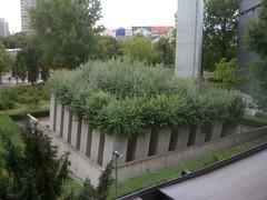 Musée juif de Berlin - vue sur le Jardin de l'exil