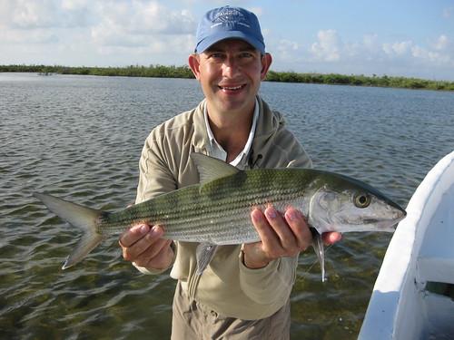 Cozumel bonefishing exeeds expectations the caddis fly for Fly fishing cozumel