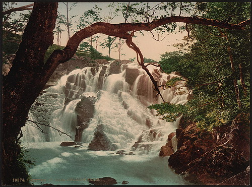 [Swallow Falls II, Fairy Glen, Bettws-y-Coed (i.e. Betws), Wales] (LOC)