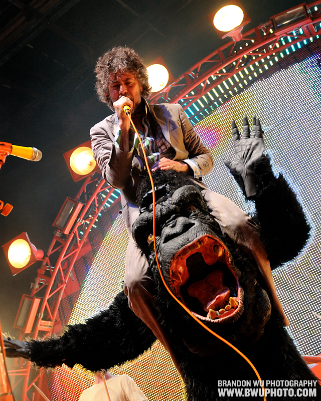 The Flaming Lips 29