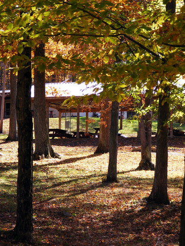 county autumn trees fall leaves md picnic maryland foliage pavilion midland picnictable allegany thepatch sportmansclub javcon117 frostphotos