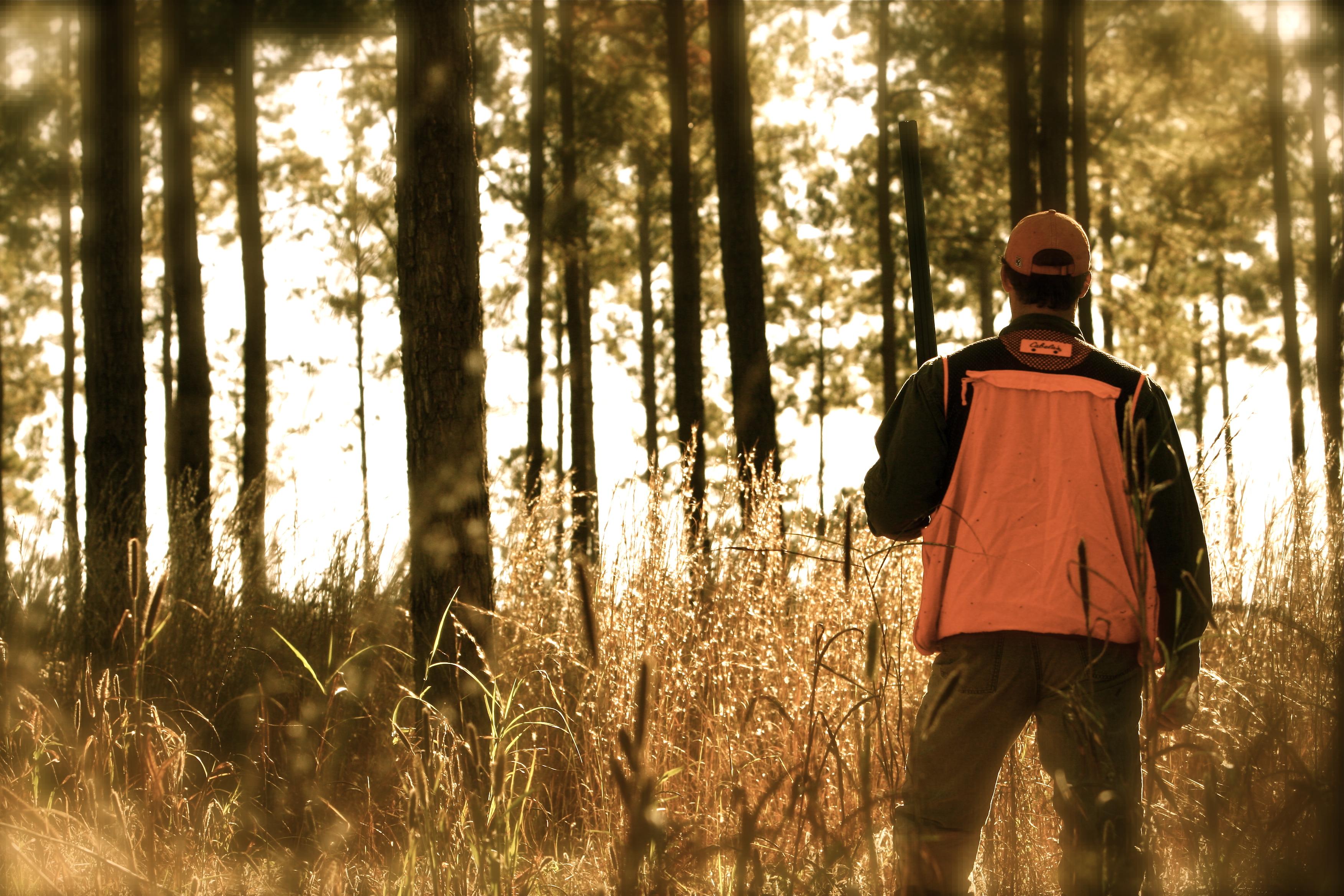 Hunter in flare orange safety gear