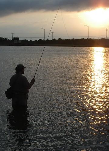 Paflyfish ocean city nj fly fishing forums warm for Nj fly fishing