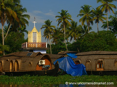 Backwater Lettuce, Cathedral and Houseboat: Kerala