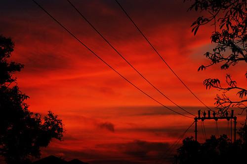 red sky color canon powerlines wires om prashant wildlifepark dfc kanha thepca powerwires 400d prashantbhardwaj