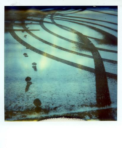 Polaroid Week Image #5