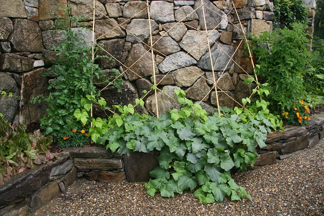 trellis in vegetable garden flickr photo sharing