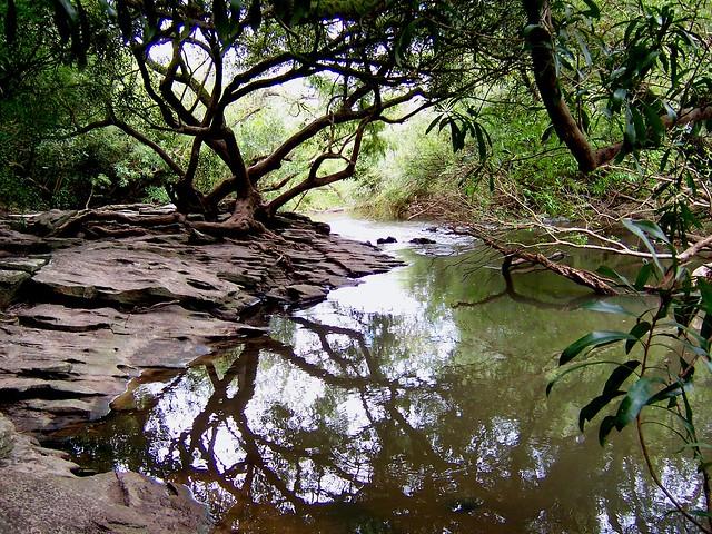 Descanso - Parque nacional El Palmar - Colón- Entre Rios ...
