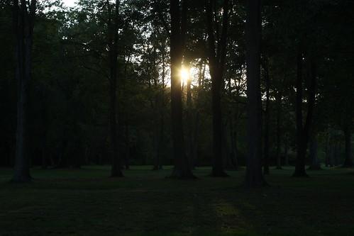 park sunset ny gargoyle manualfocus 50mmf14 olean supermulticoatedtakumar canon40d