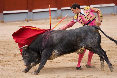 Corridas de toros - Chinchón 2009-8