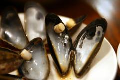Mussels, eaten
