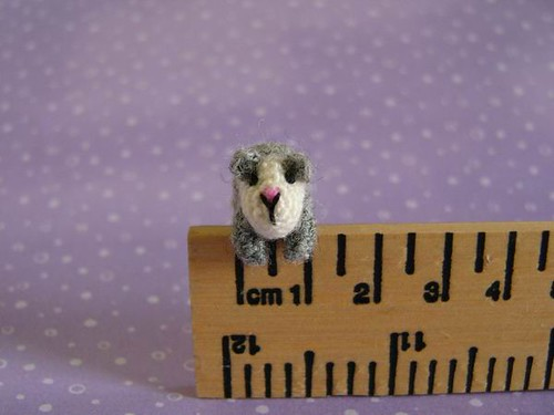 Guinea Pig on a ruler by MUFFA Miniatures